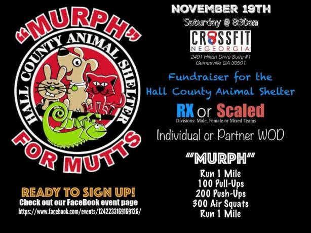 "Register for ""Murph"" for Mutts at https://wodleader.com/competitions/murph4mutts"